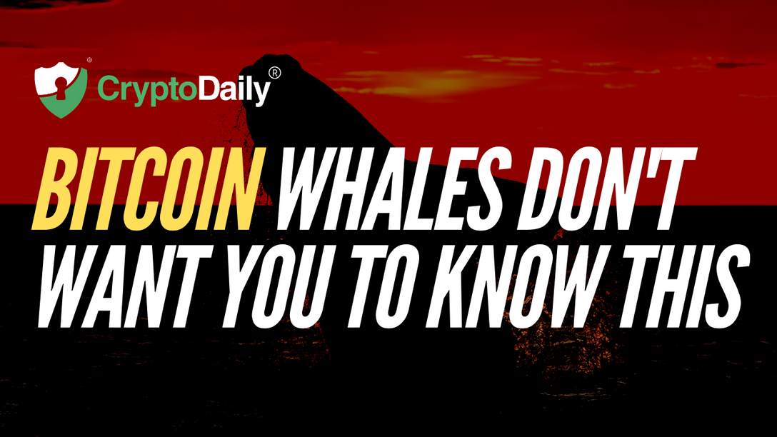 Bitcoin (BTC) Whales Don't Want You To Know This