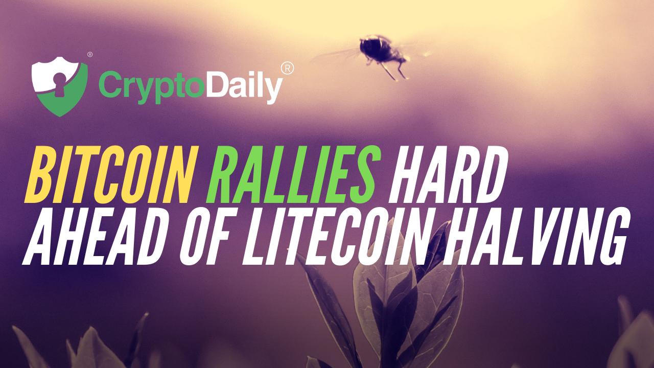 Bitcoin (BTC) Rallies Hard Ahead Of Litecoin (LTC) Halving