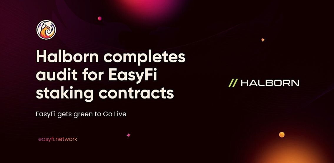 EasyFi Successfully Concludes The First Round Of Checks And Audits
