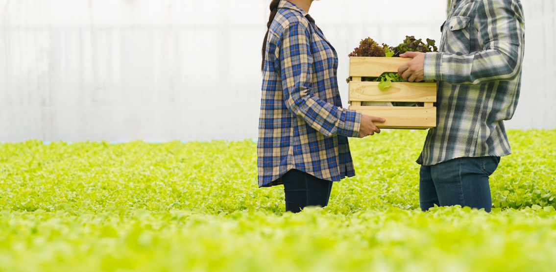 Innovative Companies Are Using Blockchain Technology To Create A Fair And Sustainable Food System