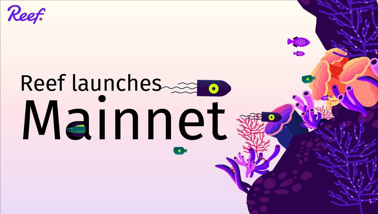 Reef Chain Announces Mainnet Launch For May, Opens Testnet