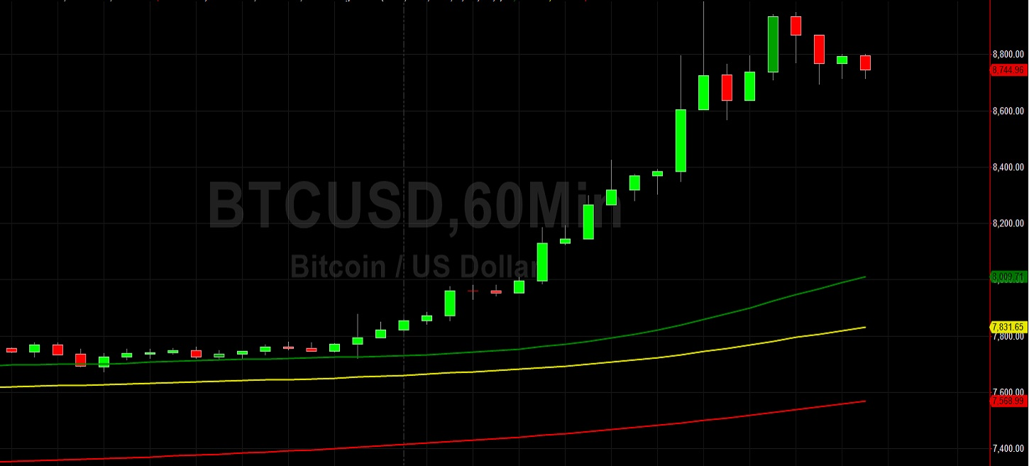 BTC/USD Loses Staring Match with 9000 - For Now:  Sally Ho's Technical Analysis 30 April 2020 BTC
