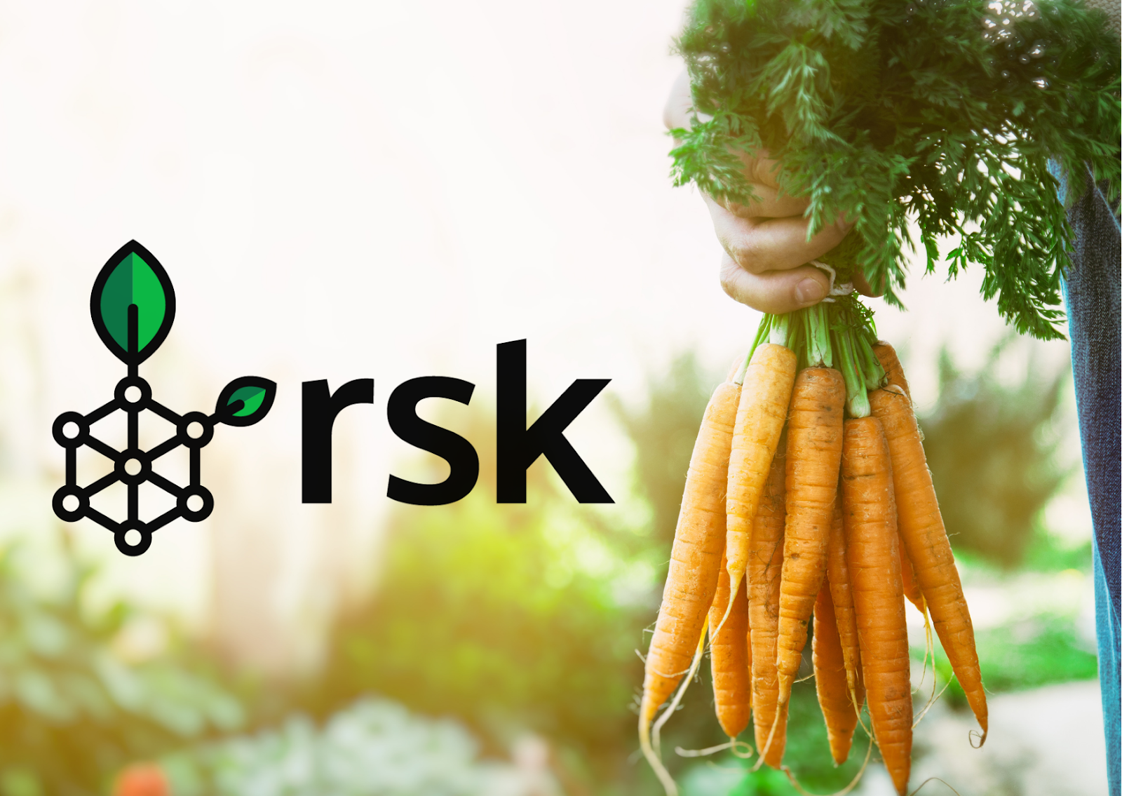 Can The RSK Network Benefit From Bitcoin's Taproot Upgrade?