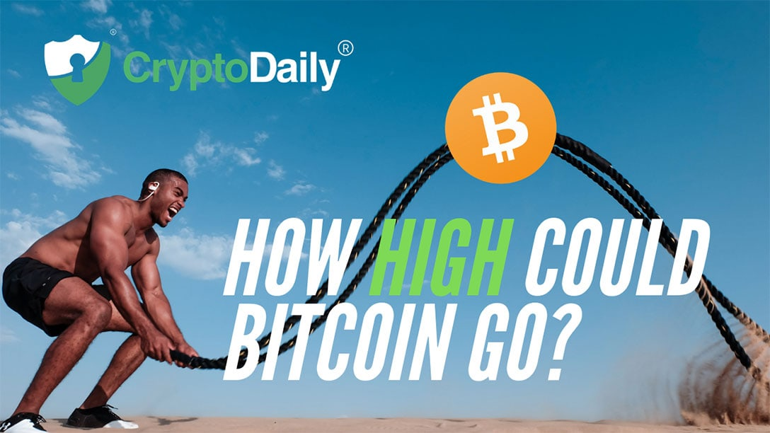 How High Could Bitcoin Go?