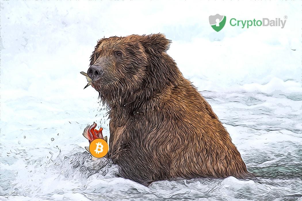 Despite Losses Bitcoin Will Prevail