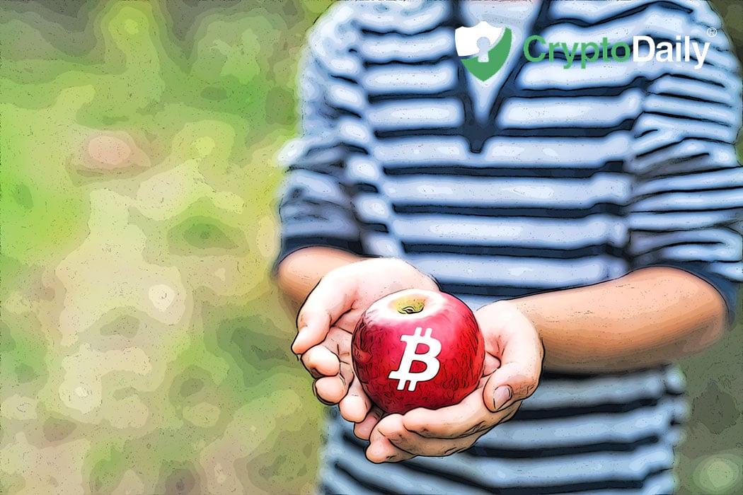 Le PDG de Binance Soulagé De Voir La Volatilité De Bitcoin Une Fois De Plus