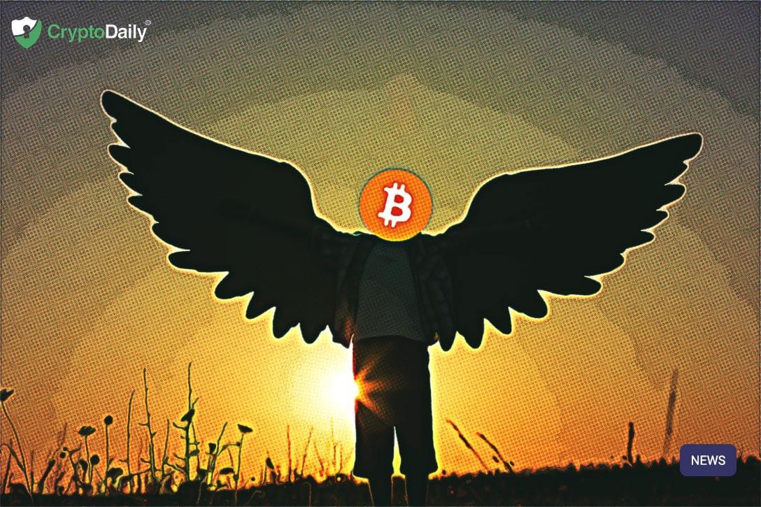 Bitcoin Activity Is Still Flying High