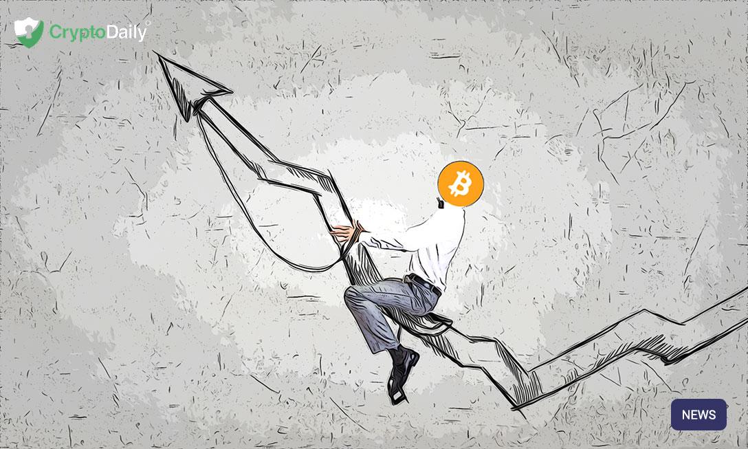 Bitcoins Most Prolific Inspirations