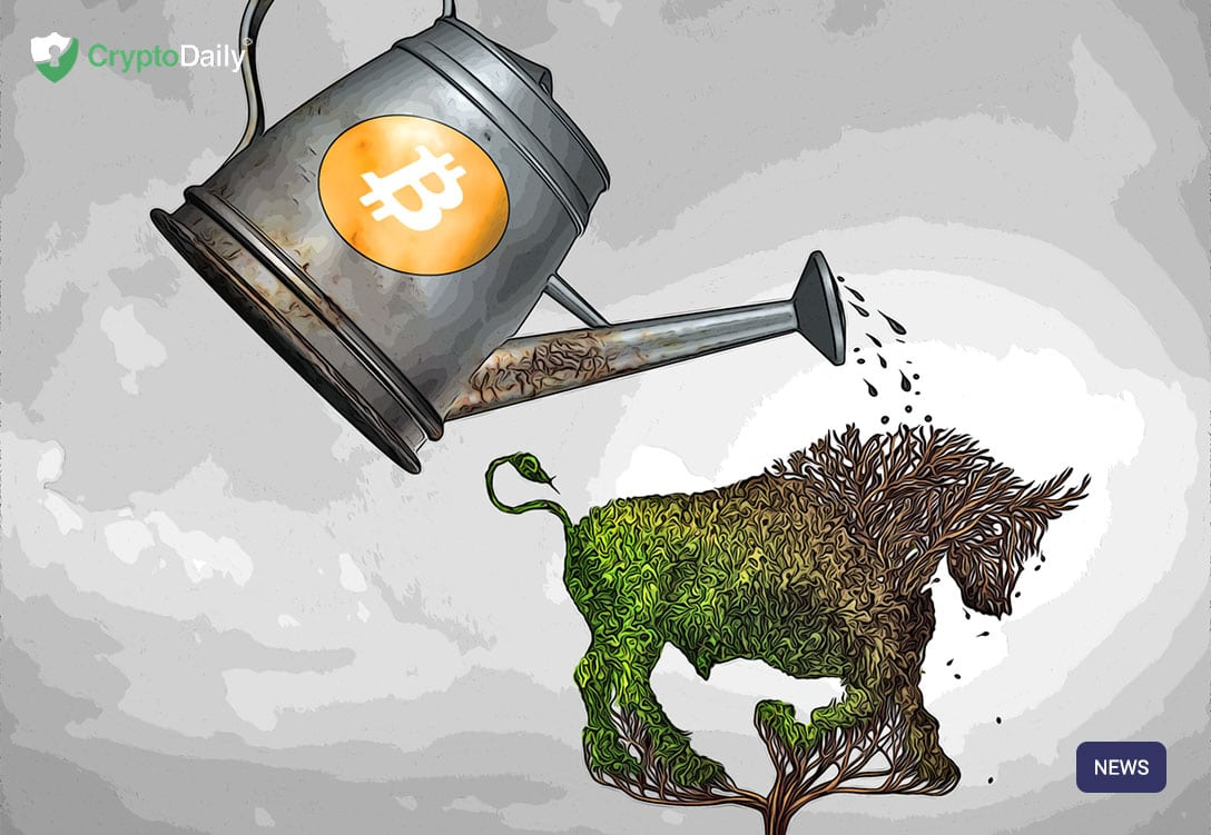Tom Lee: Bitcoin Bull Run In August