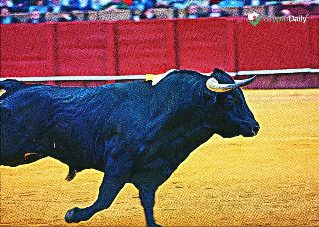 卡尔达诺将成为下一个牛市的关键