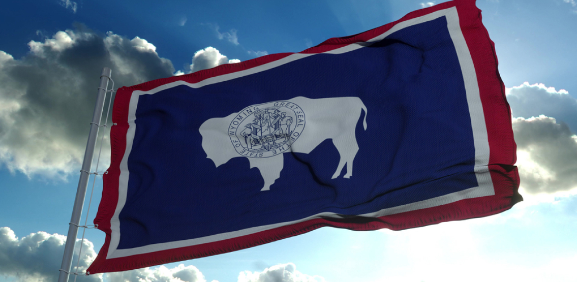 Wyoming Approves First Legally Recognized DAO